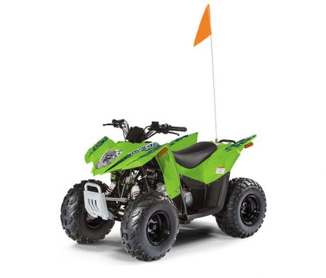 Textron (Arctic Cat) Alterra DVX 90 2019